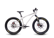 "Велосипед Early Rider Belter 20"" Trail 3S"